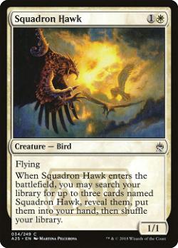 Squadron Hawk image
