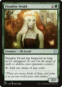 Paradise Druid image