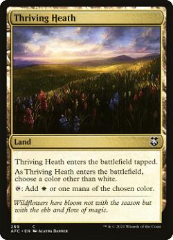 Thriving Heath image