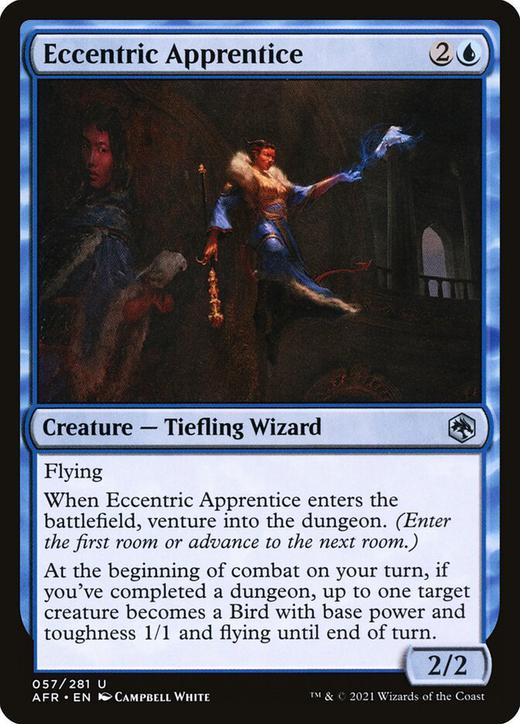 Eccentric Apprentice image