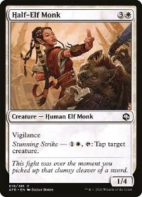 Half-Elf Monk image