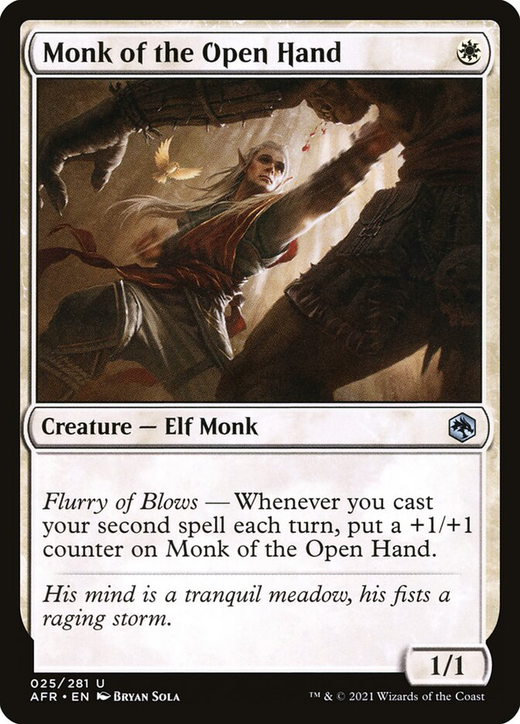 Monk of the Open Hand image