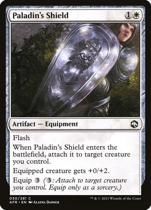 Paladin's Shield image