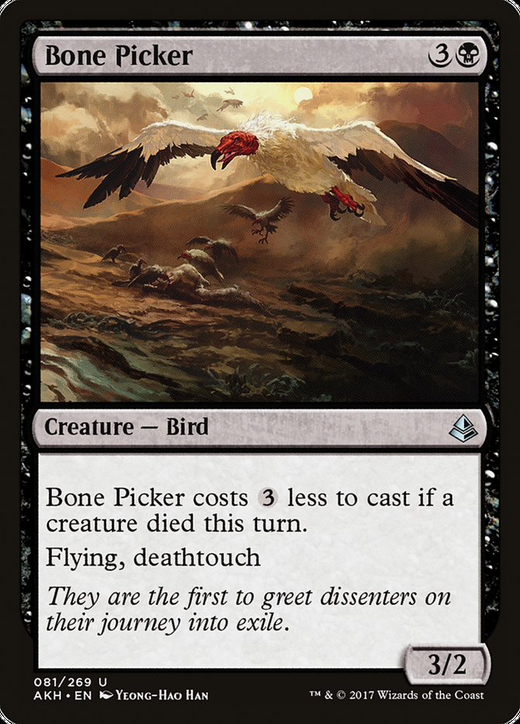Bone Picker image