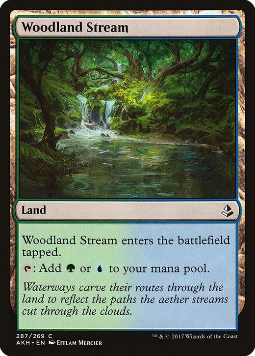 Woodland Stream image