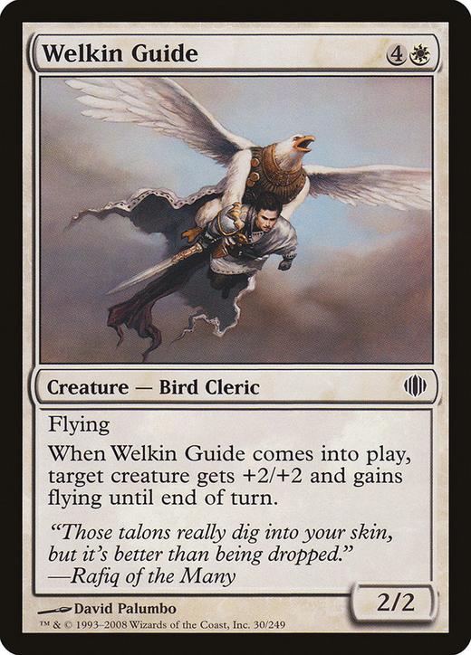Welkin Guide image