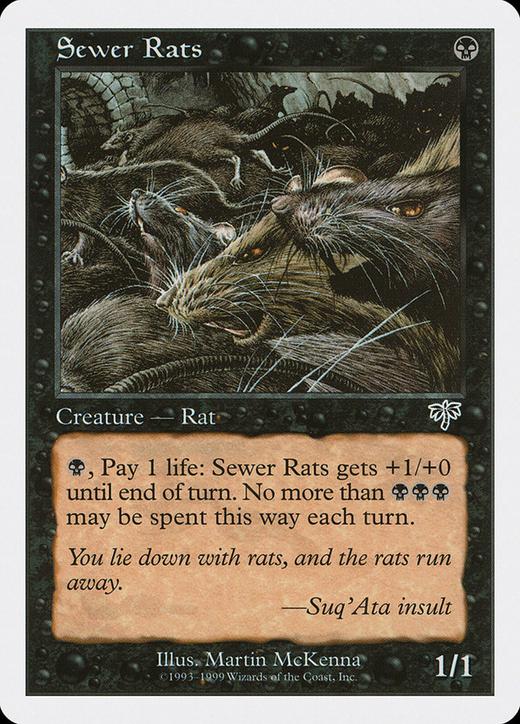 Sewer Rats image