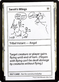 Sarah's Wings image