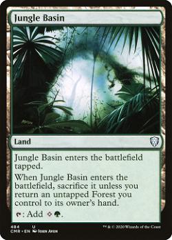 Jungle Basin image
