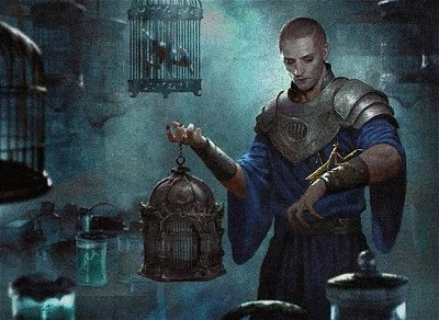 Pauper: What to expect when you are waiting!