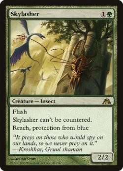 Skylasher image