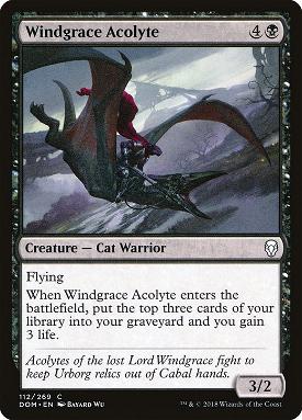 Windgrace Acolyte image