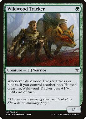 Wildwood Tracker image