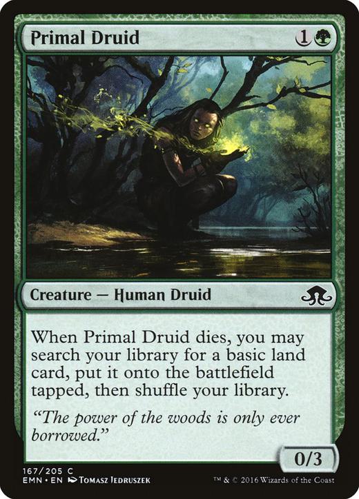 Primal Druid image