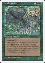 Land Leeches image