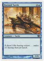 Horned Turtle image