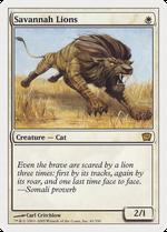Savannah Lions image