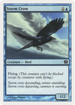 Storm Crow image