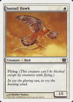Suntail Hawk image