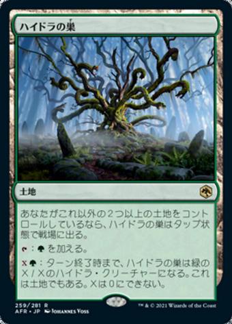 Hydra Nest image