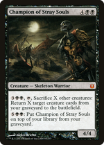 Champion of Stray Souls image