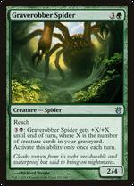 Graverobber Spider image