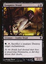 Quagmire Druid image