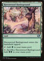 Havenwood Battleground image