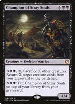 Champion of Stray Souls image