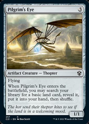 Pilgrim's Eye image