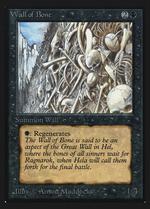 Wall of Bone image