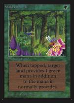 Wild Growth image
