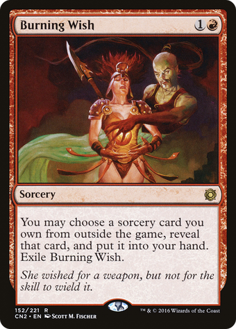 Burning Wish image