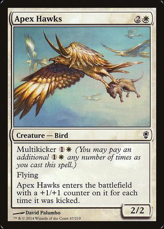 Apex Hawks image