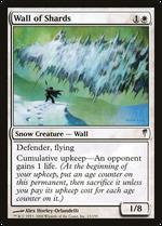 Wall of Shards image