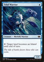Tidal Warrior image