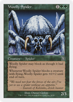 Woolly Spider image