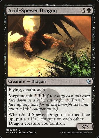 Acid-Spewer Dragon image