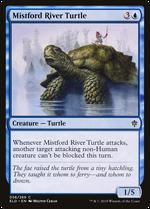 Mistford River Turtle image