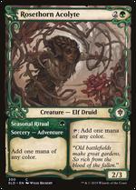 Rosethorn Acolyte // Seasonal Ritual image