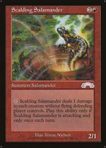 Scalding Salamander image