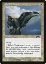 Welkin Hawk image