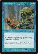 Whiptongue Frog image