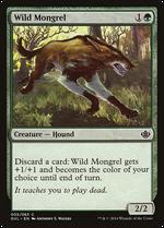 Wild Mongrel image