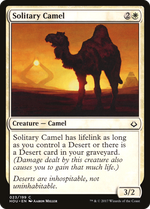 Solitary Camel image