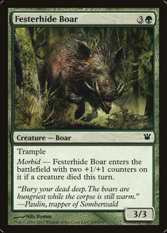 Festerhide Boar image