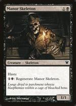 Manor Skeleton image