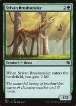 Sylvan Brushstrider image