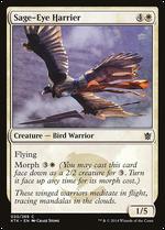 Sage-Eye Harrier image