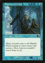 Fugitive Wizard image